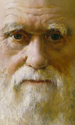 """Response to """"No Replacement of Darwin: A Review of Replacing Darwin—The New Origin of Species"""""""
