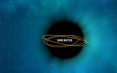The Role of the Burbidges in Opposing the Acceptance of Dark Matter: A Cautionary Tale